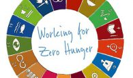 Working for Zero Hunger